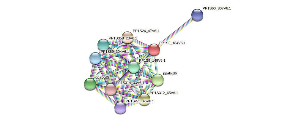 PP1S3_184V6.1 protein (Physcomitrella patens) - STRING interaction network