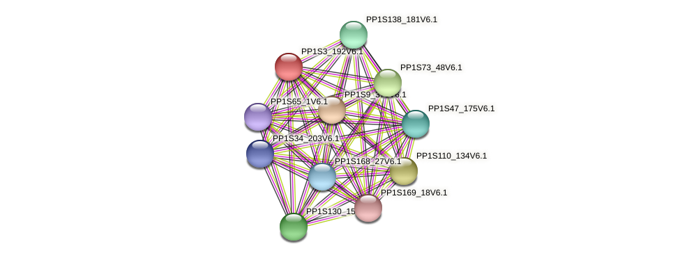 PP1S3_192V6.1 protein (Physcomitrella patens) - STRING interaction network