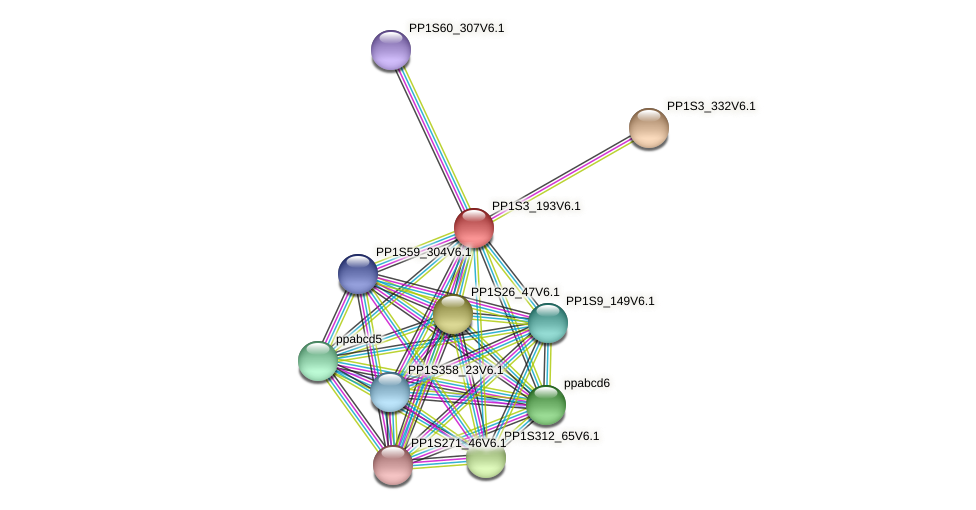 PP1S3_193V6.1 protein (Physcomitrella patens) - STRING interaction network