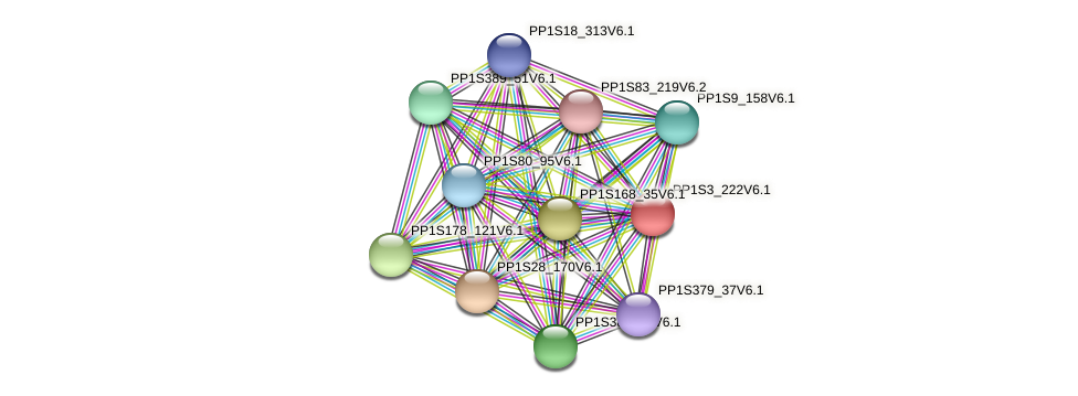 PP1S3_222V6.1 protein (Physcomitrella patens) - STRING interaction network