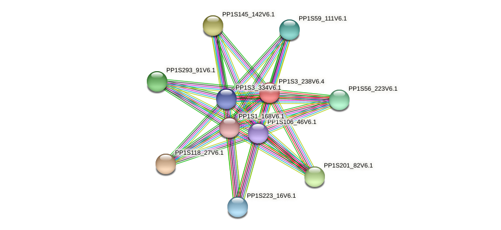 PP1S3_238V6.1 protein (Physcomitrella patens) - STRING interaction network