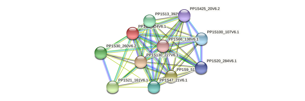 PP1S3_324V6.1 protein (Physcomitrella patens) - STRING interaction network