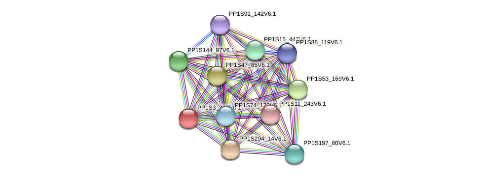 PP1S3_333V6.1 protein (Physcomitrella patens) - STRING interaction network