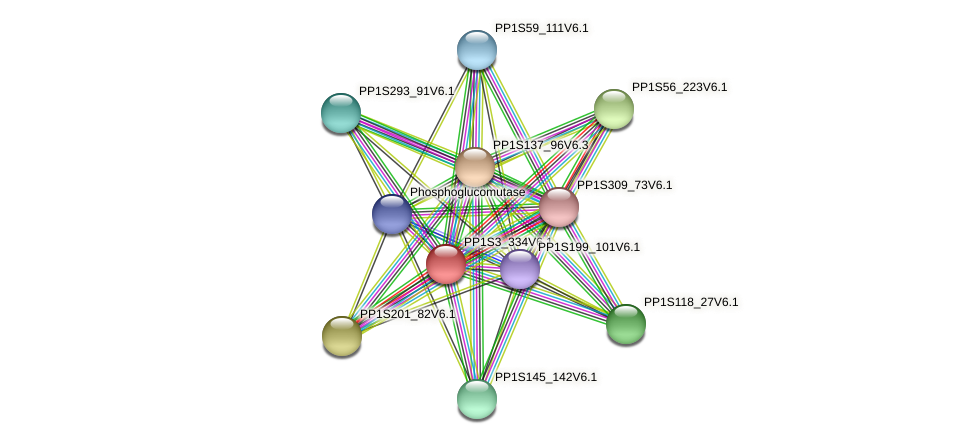 PP1S3_334V6.1 protein (Physcomitrella patens) - STRING interaction network