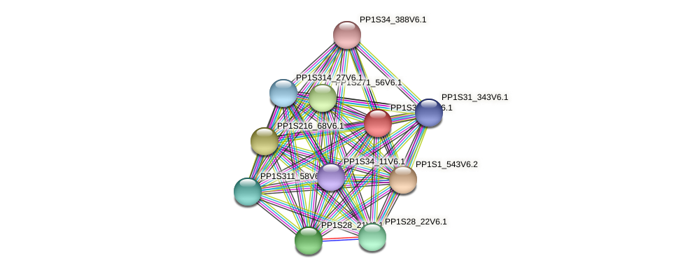 PP1S3_341V6.1 protein (Physcomitrella patens) - STRING interaction network