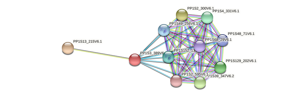 PP1S3_389V6.1 protein (Physcomitrella patens) - STRING interaction network