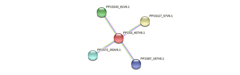 PP1S3_407V6.1 protein (Physcomitrella patens) - STRING interaction network