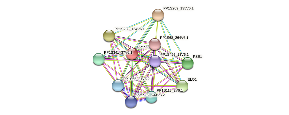 PP1S3_40V6.1 protein (Physcomitrella patens) - STRING interaction network