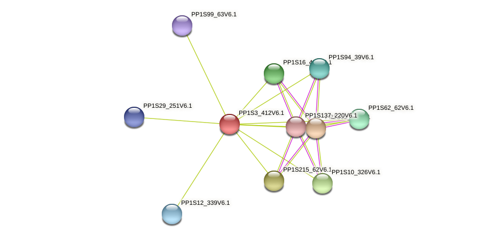 PP1S3_412V6.1 protein (Physcomitrella patens) - STRING interaction network