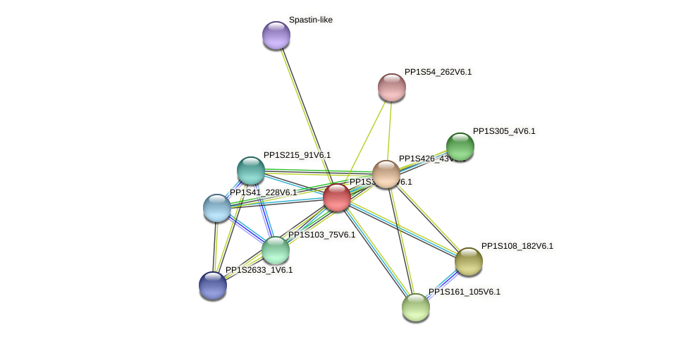 PP1S3_432V6.1 protein (Physcomitrella patens) - STRING interaction network