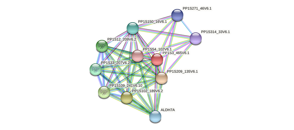PP1S3_465V6.1 protein (Physcomitrella patens) - STRING interaction network