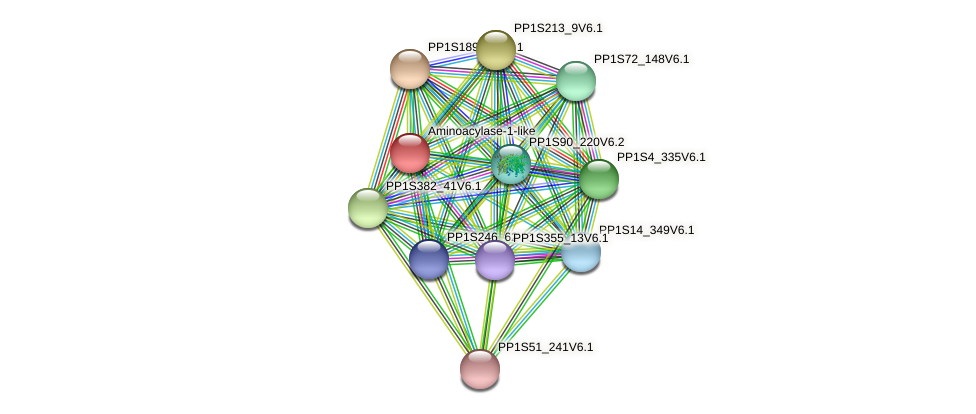 PP1S3_478V6.1 protein (Physcomitrella patens) - STRING interaction network
