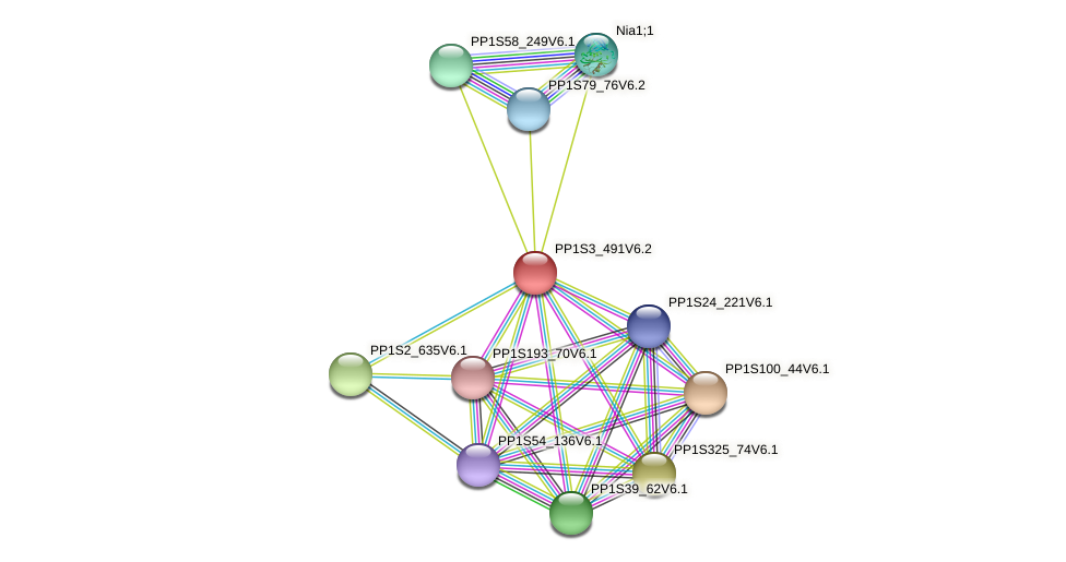 PP1S3_491V6.2 protein (Physcomitrella patens) - STRING interaction network