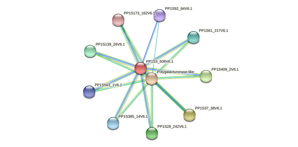 PP1S3_508V6.1 protein (Physcomitrella patens) - STRING interaction network