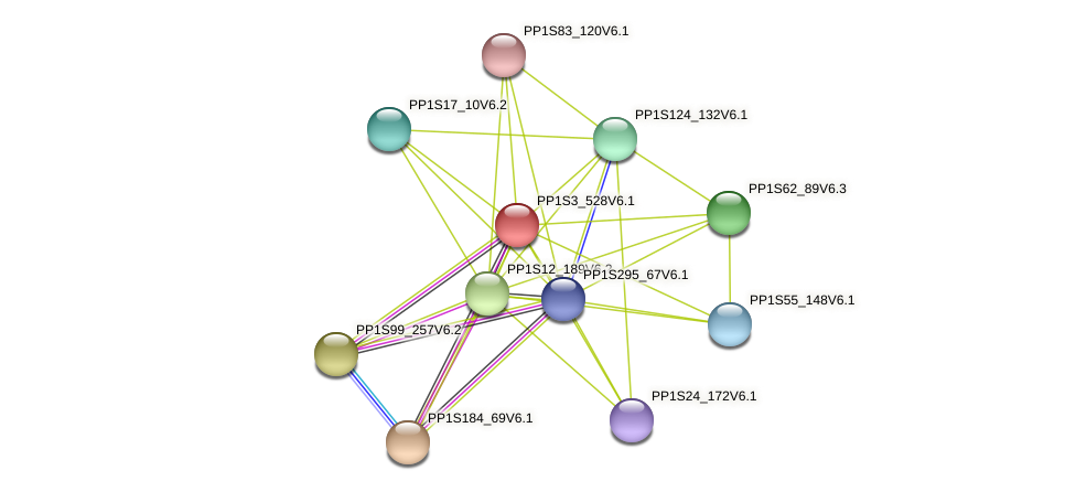 PP1S3_528V6.1 protein (Physcomitrella patens) - STRING interaction network