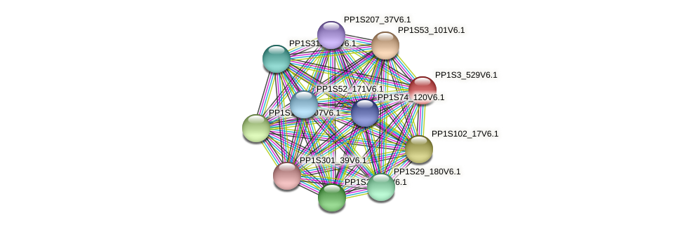 PP1S3_529V6.1 protein (Physcomitrella patens) - STRING interaction network