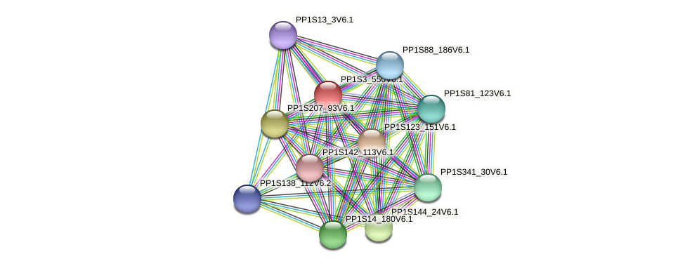 PP1S3_550V6.1 protein (Physcomitrella patens) - STRING interaction network