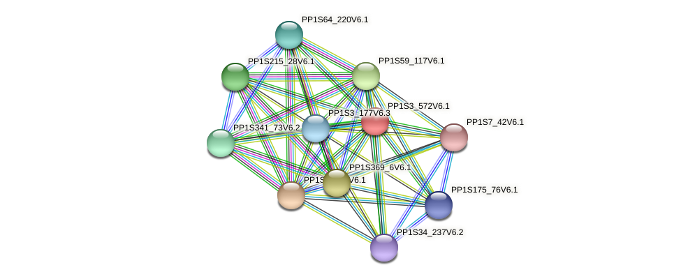 PP1S3_572V6.1 protein (Physcomitrella patens) - STRING interaction network