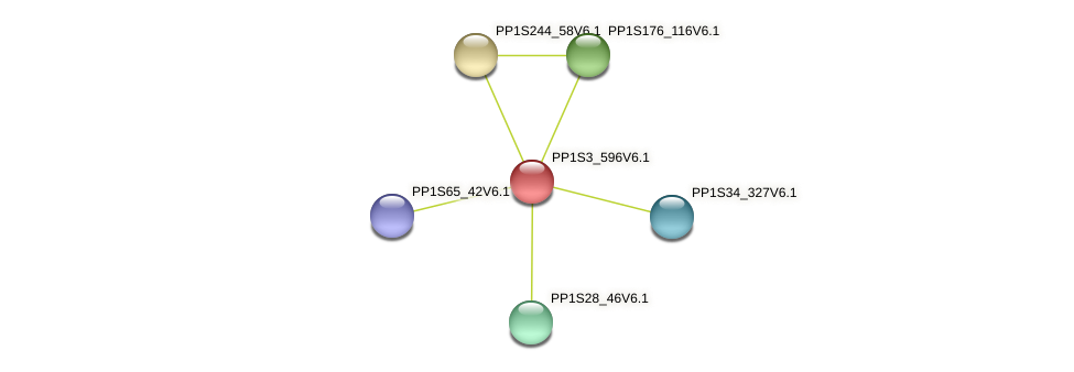 PP1S3_596V6.1 protein (Physcomitrella patens) - STRING interaction network