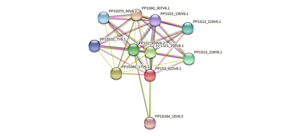 PP1S3_622V6.1 protein (Physcomitrella patens) - STRING interaction network