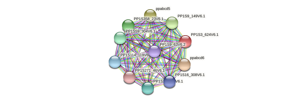 PP1S3_624V6.1 protein (Physcomitrella patens) - STRING interaction network