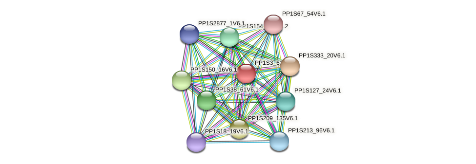 PP1S3_633V6.1 protein (Physcomitrella patens) - STRING interaction network