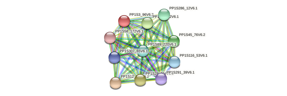 PP1S3_96V6.2 protein (Physcomitrella patens) - STRING interaction network