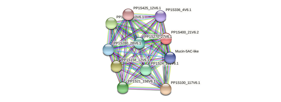 PP1S400_21V6.1 protein (Physcomitrella patens) - STRING interaction network