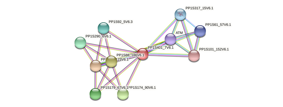 PP1S401_7V6.1 protein (Physcomitrella patens) - STRING interaction network