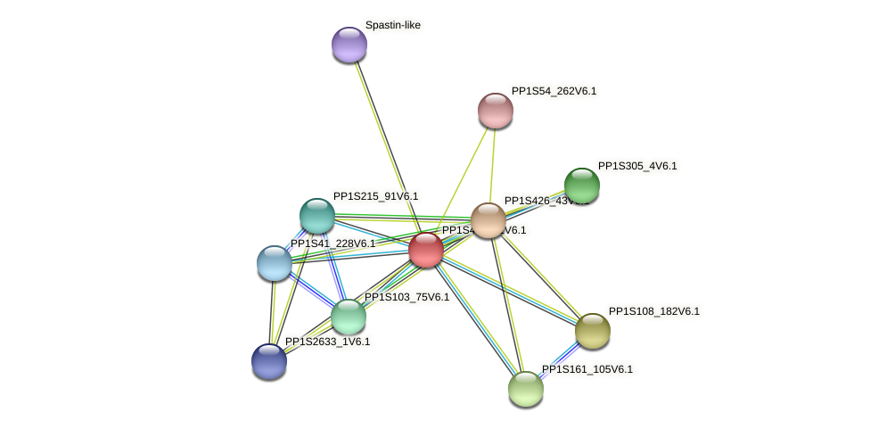PP1S402_11V6.1 protein (Physcomitrella patens) - STRING interaction network