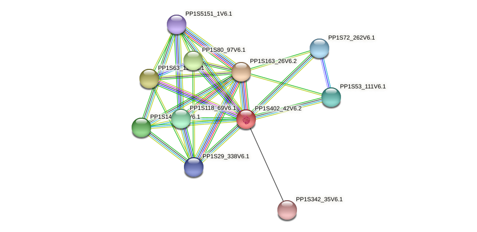 PP1S402_42V6.2 protein (Physcomitrella patens) - STRING interaction network
