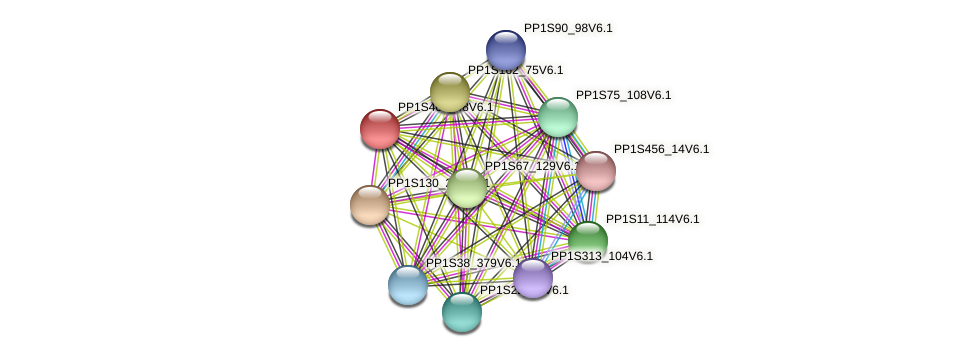 PP1S402_48V6.1 protein (Physcomitrella patens) - STRING interaction network