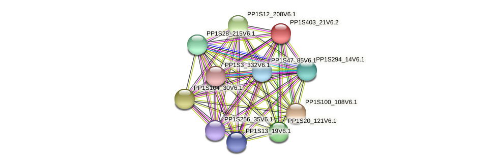 PP1S403_21V6.1 protein (Physcomitrella patens) - STRING interaction network