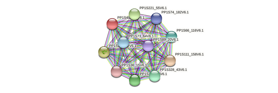 PP1S403_37V6.1 protein (Physcomitrella patens) - STRING interaction network