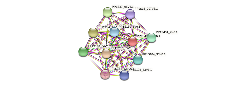 PP1S403_39V6.1 protein (Physcomitrella patens) - STRING interaction network
