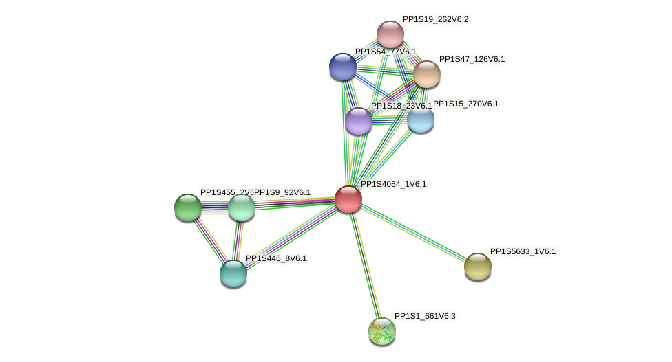 PP1S4054_1V6.1 protein (Physcomitrella patens) - STRING interaction network