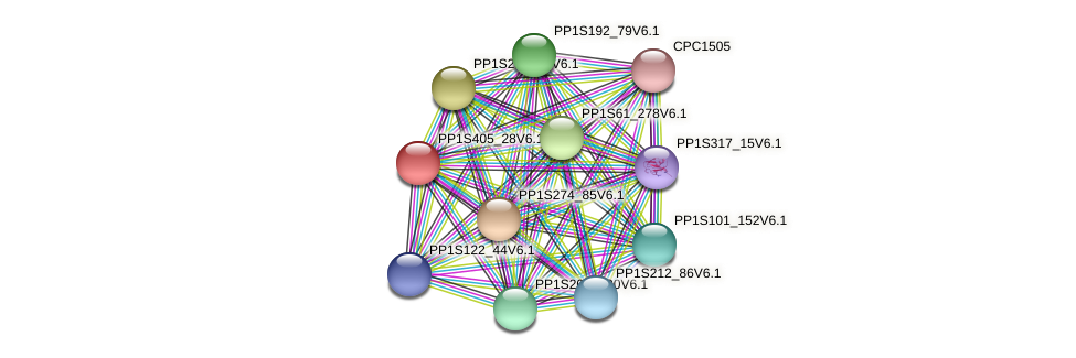 PP1S405_28V6.1 protein (Physcomitrella patens) - STRING interaction network