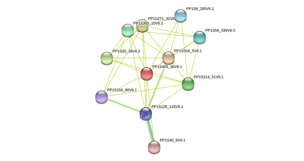 PP1S405_30V6.1 protein (Physcomitrella patens) - STRING interaction network