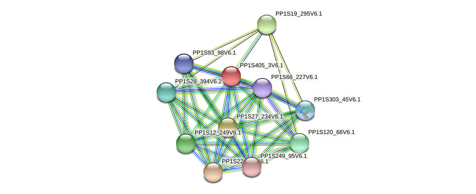 PP1S405_3V6.1 protein (Physcomitrella patens) - STRING interaction network