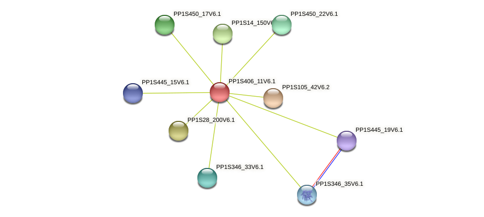 PP1S406_11V6.1 protein (Physcomitrella patens) - STRING interaction network