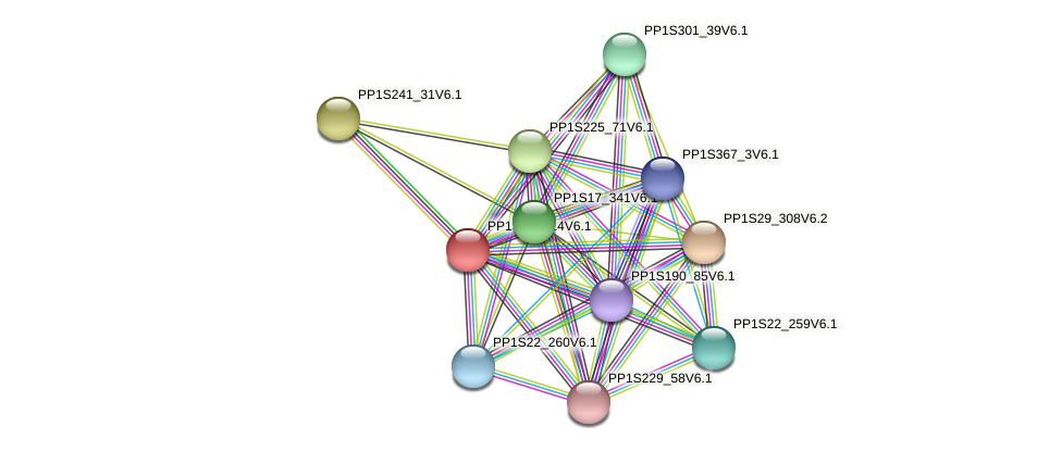 PP1S406_14V6.1 protein (Physcomitrella patens) - STRING interaction network