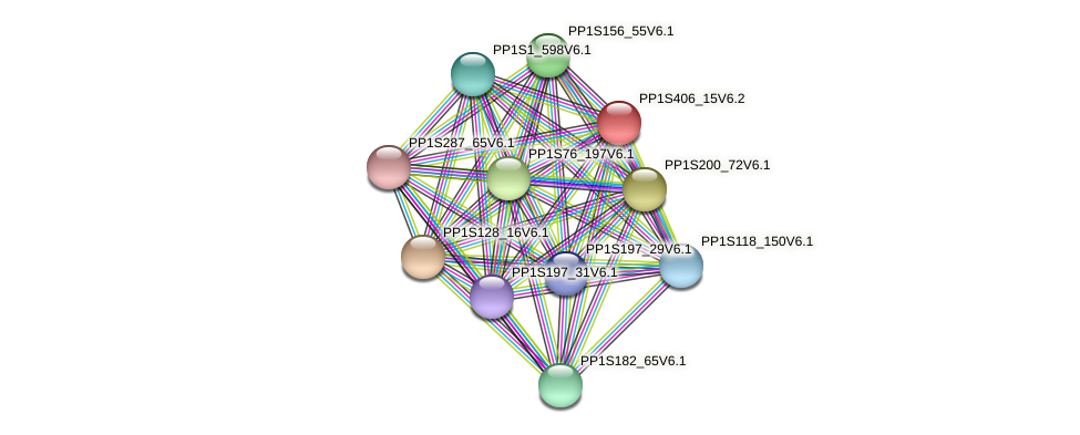 PP1S406_15V6.1 protein (Physcomitrella patens) - STRING interaction network