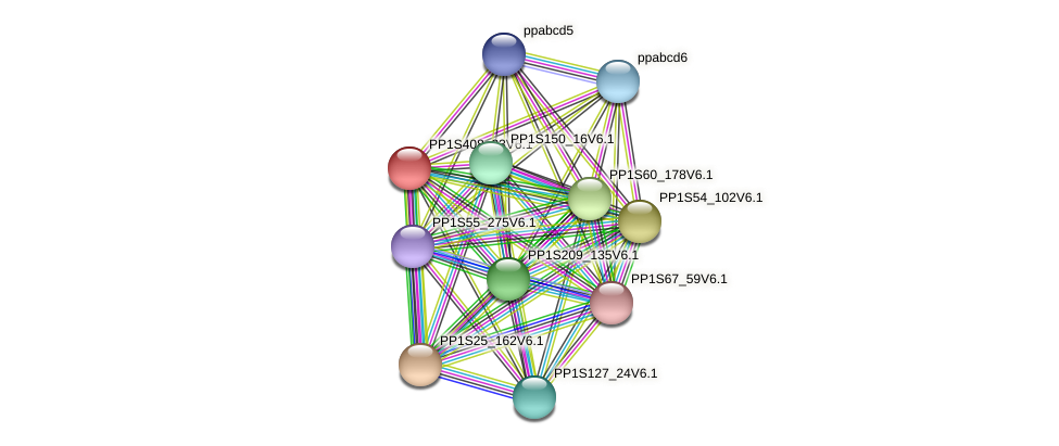 PP1S408_23V6.1 protein (Physcomitrella patens) - STRING interaction network