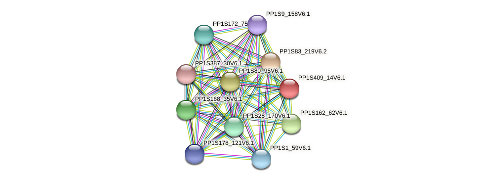 PP1S409_14V6.1 protein (Physcomitrella patens) - STRING interaction network