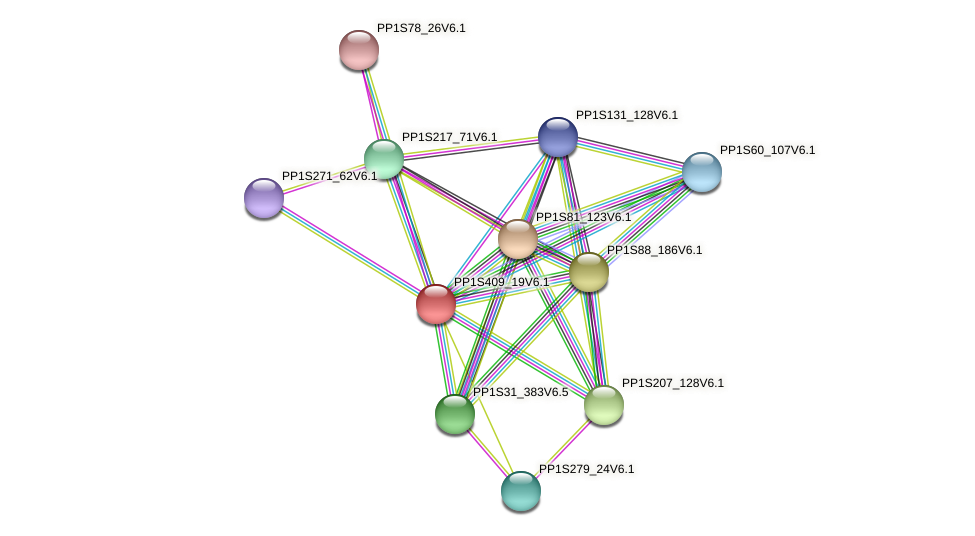 PP1S409_19V6.1 protein (Physcomitrella patens) - STRING interaction network