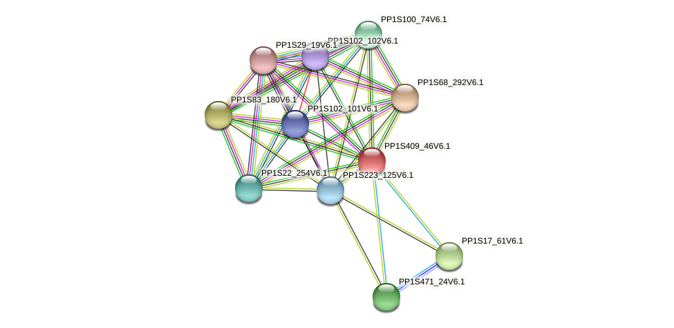 PP1S409_46V6.1 protein (Physcomitrella patens) - STRING interaction network