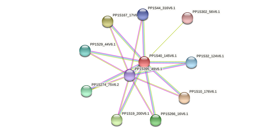 PP1S40_145V6.1 protein (Physcomitrella patens) - STRING interaction network