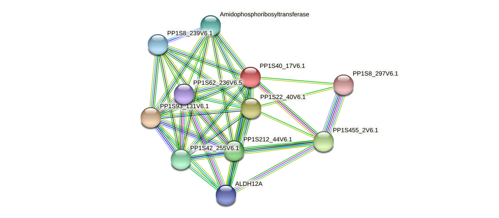 PP1S40_17V6.1 protein (Physcomitrella patens) - STRING interaction network