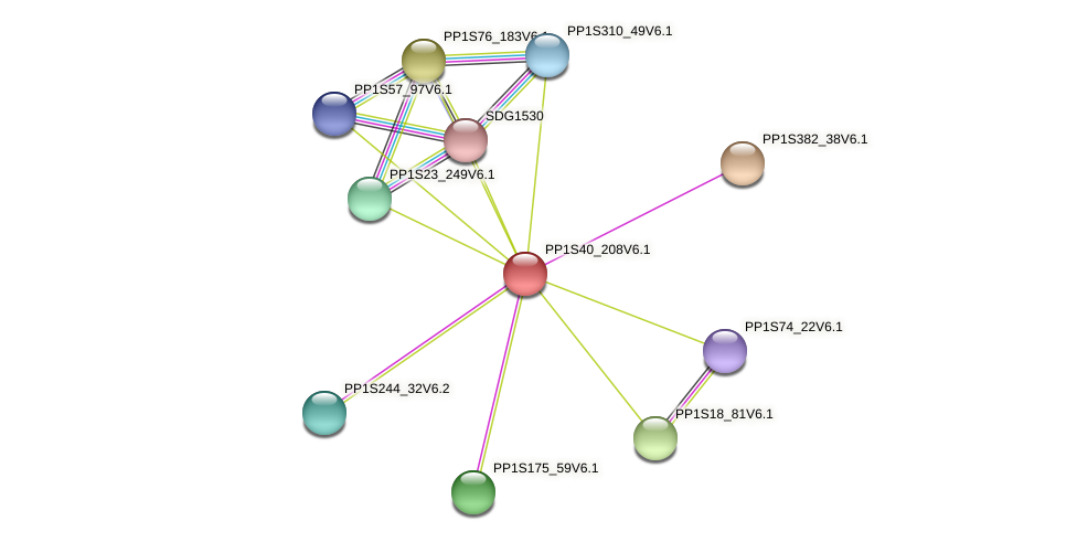 PP1S40_208V6.1 protein (Physcomitrella patens) - STRING interaction network