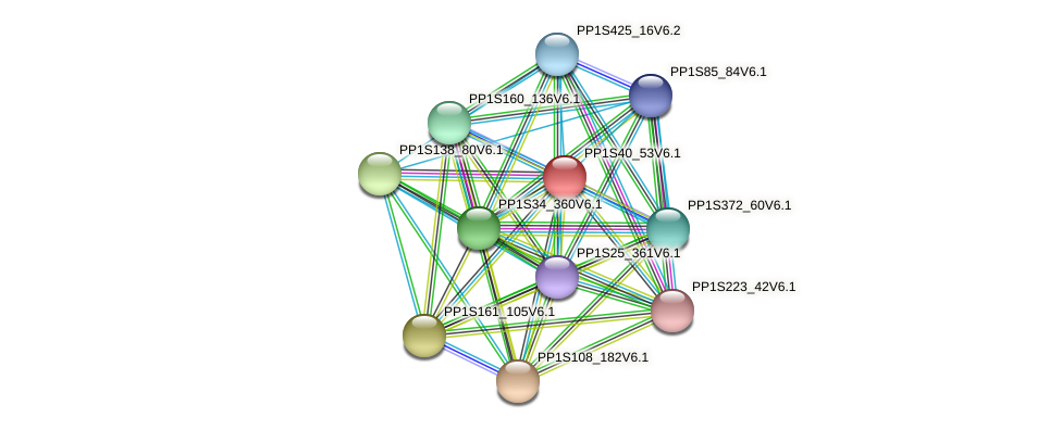 PP1S40_53V6.1 protein (Physcomitrella patens) - STRING interaction network